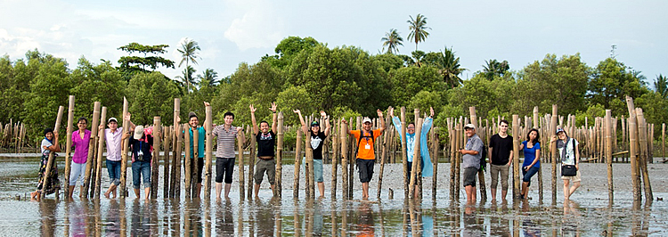 Photo above shows some of the 2nd ASFCC Learning Group Workshop participants posing between bamboo poles built as a fence by the local community to increase the survival rate of young mangrove seedlings and thereby build coastal resilience and reduce storm surge in Klong Prasong Community Forest, Krabi, Thailand.