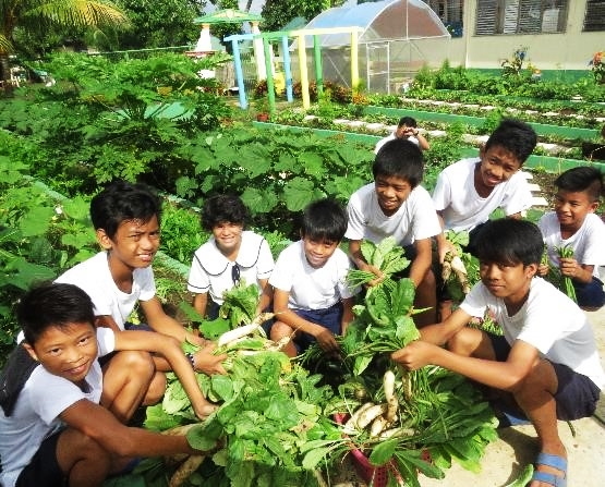 school and home gardens 1